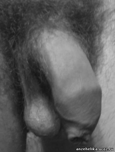 оптимальный размер полового члена Тула